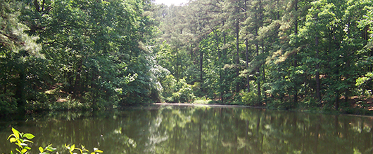 Smooth lake surrounded by green trees at Camp Whispering Pines in Garrison, Texas