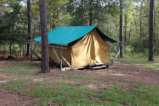 Tan platform tent with green tarp at Camp Robinwood in Willis, Texas